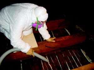 Cleaning the attic bays prior to installing insulation is critical.